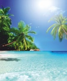 """Шторка для ванной Vasnstore """"Райский остров"""" 180x180см фотопринт 620-19"""