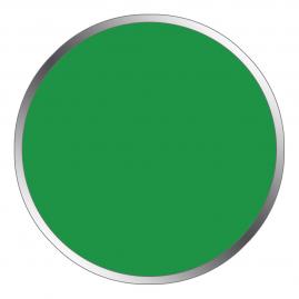 Колер Лакра №21 зеленый 100г