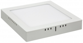 Светильник светодиодный накладной Elektrostandard DLS020 24Вт 4200K