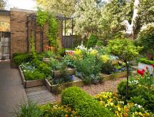 Обустройство сада и огорода